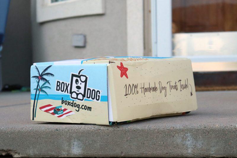 boxdog-subscription-box-review