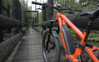 Best eBikes for any Rider